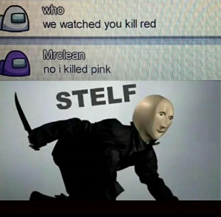 Stelf - meme