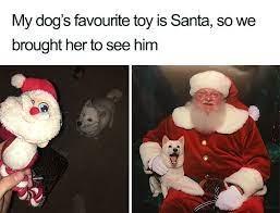 happy doggo - meme
