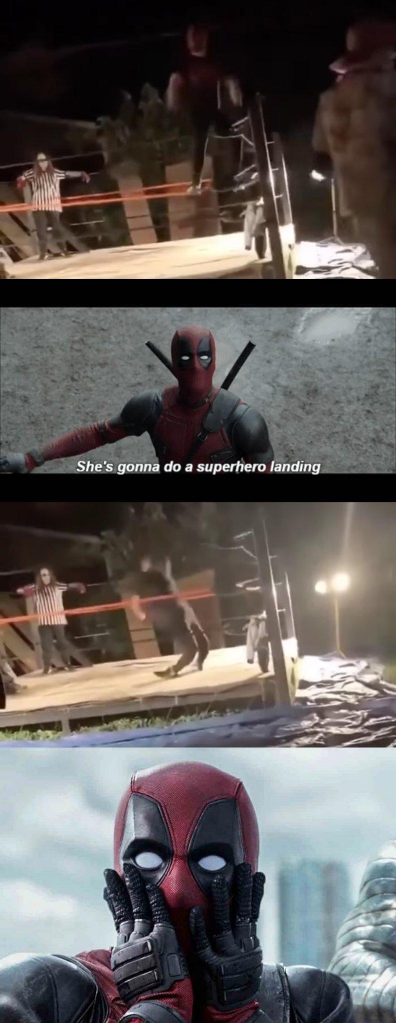 Stuck the landing - meme