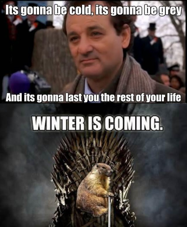 Brace yourselves - meme
