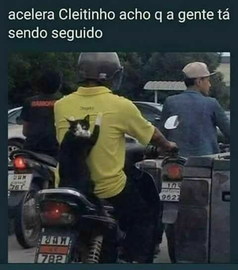 ACELERA SABAGAÇA CLEITINHOOOOO - meme