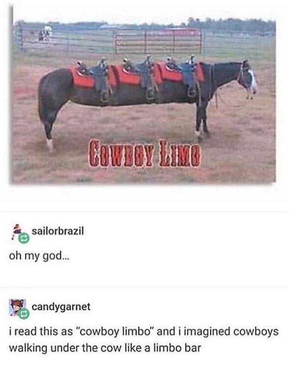 cowboy limo - meme