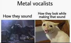 True True - meme