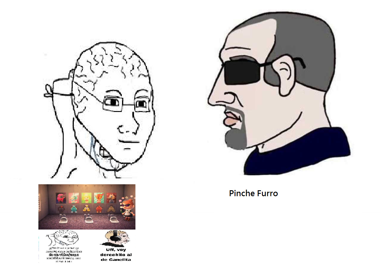 Pinche Furro - meme