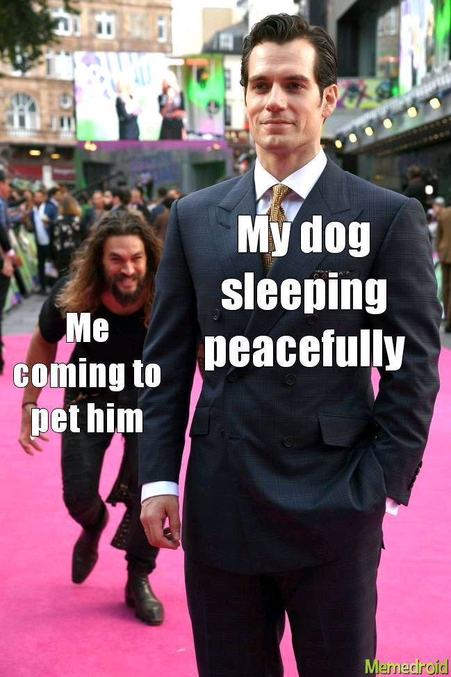 Good doggo - meme