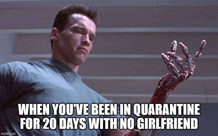 Quarantine - meme