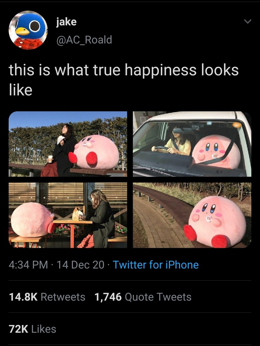 It's kirby the wholesome pink guy - meme