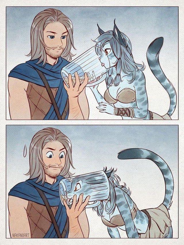 Les khajiit reste de chat - meme
