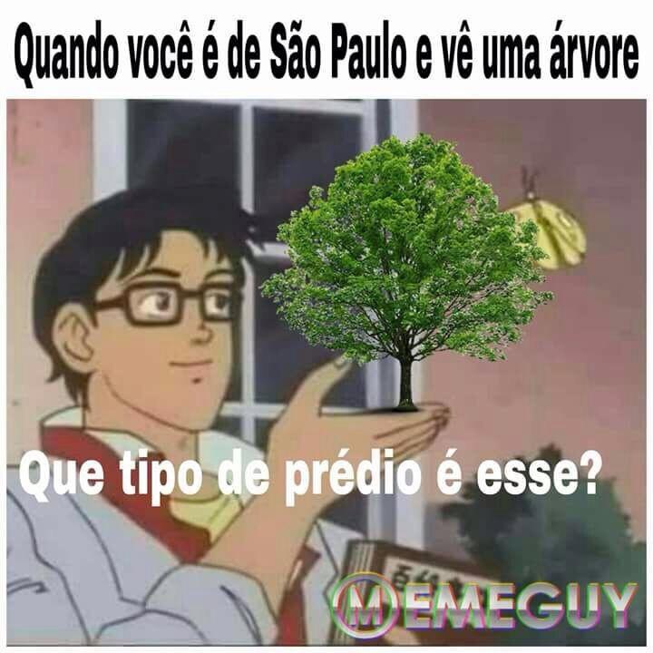 o ar puro de São Paulo - meme