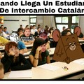 Estudiante De Intercambio