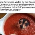 Simmer well pup