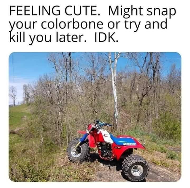 Genuine death traps - meme