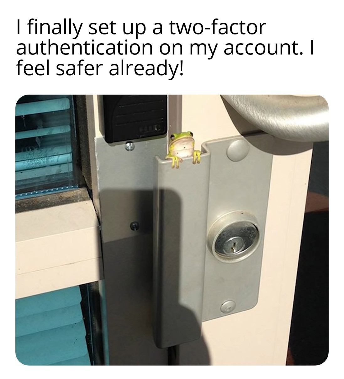 New and Improved Security - meme
