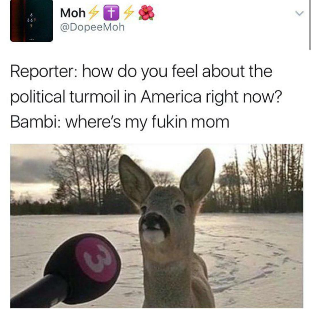 Bambi has a moustache now - meme