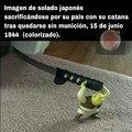 Todo_por_la_horda.jpg