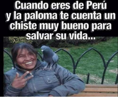 Ese es mi Peru csmr v': - meme