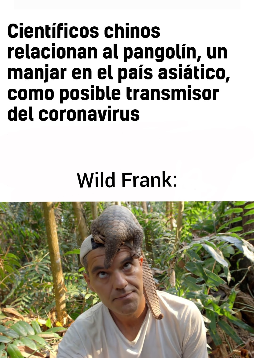 F por Wild Frank - meme