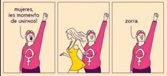 tipica feminista comun - meme