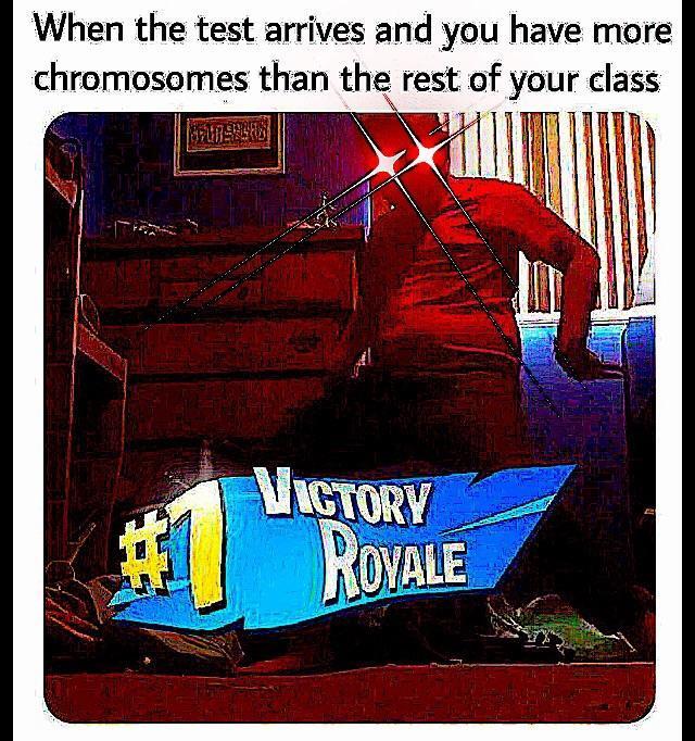 fortcuck - meme