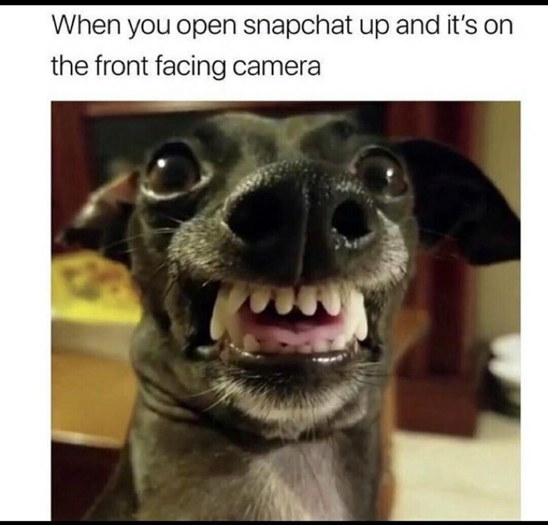 True so true - meme