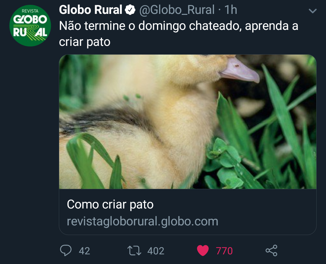 Globo Rural me tirou da depressão - meme