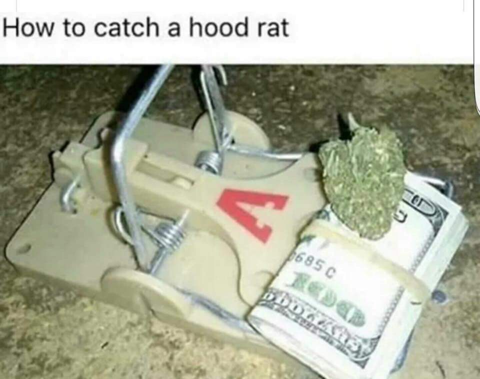Well, guess I'm a hood rat - meme