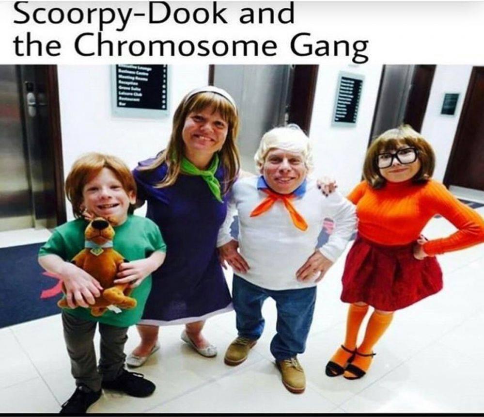 Shuggy, Dapney, Frood, Valluma, and Scorpy - meme