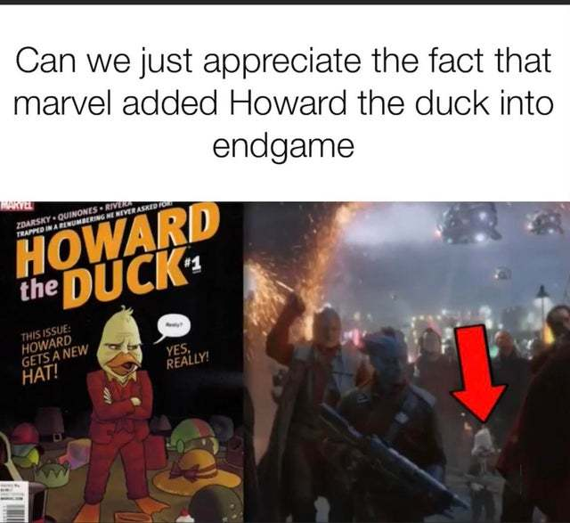 Can we appreciate the fact that Marvel added Howard the Duck into Endgame - meme