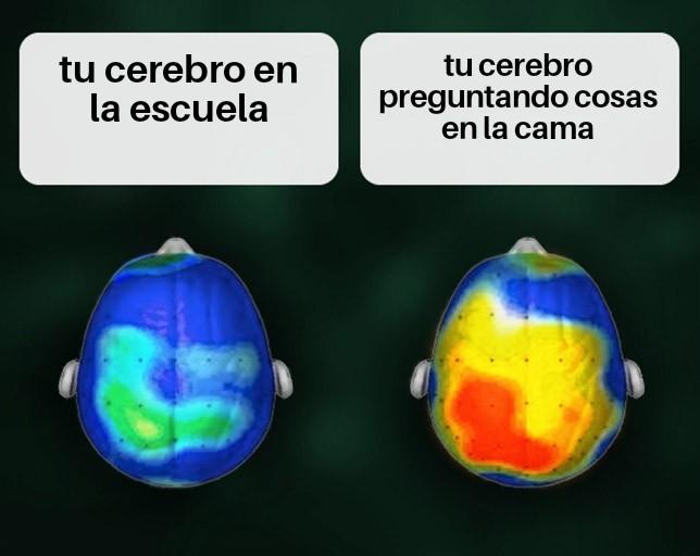 La vida XD - meme