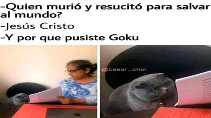 Goku XD - meme