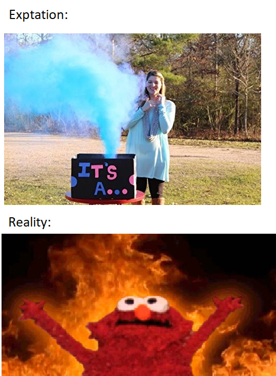 Expecation vs reality - meme