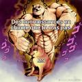 Shiba  = race de chien supérieur