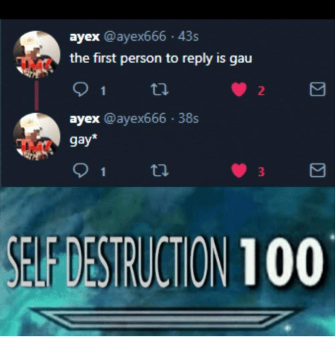 Destruction - meme