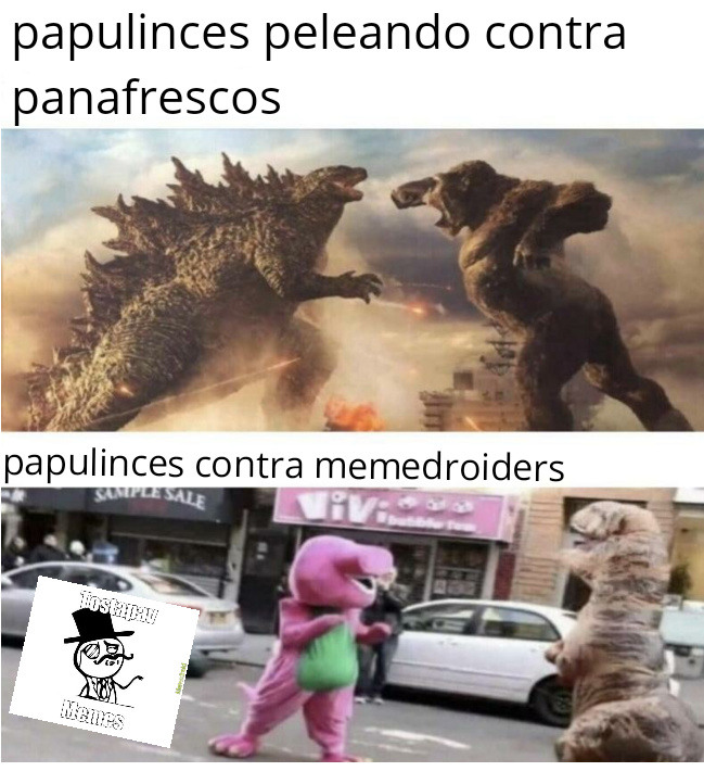 InVaDiReMoS MeMeDrOiD