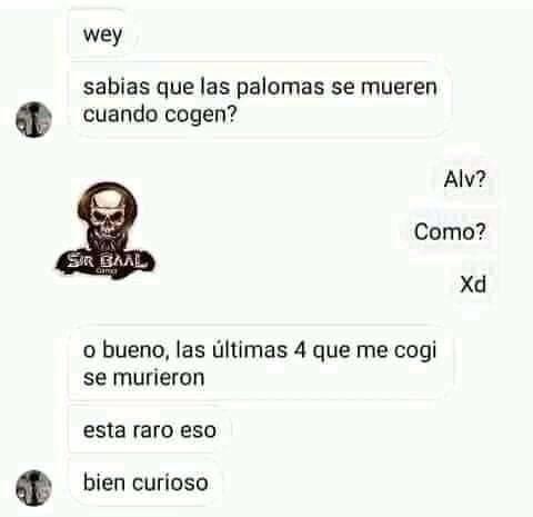 Curiosidad - meme
