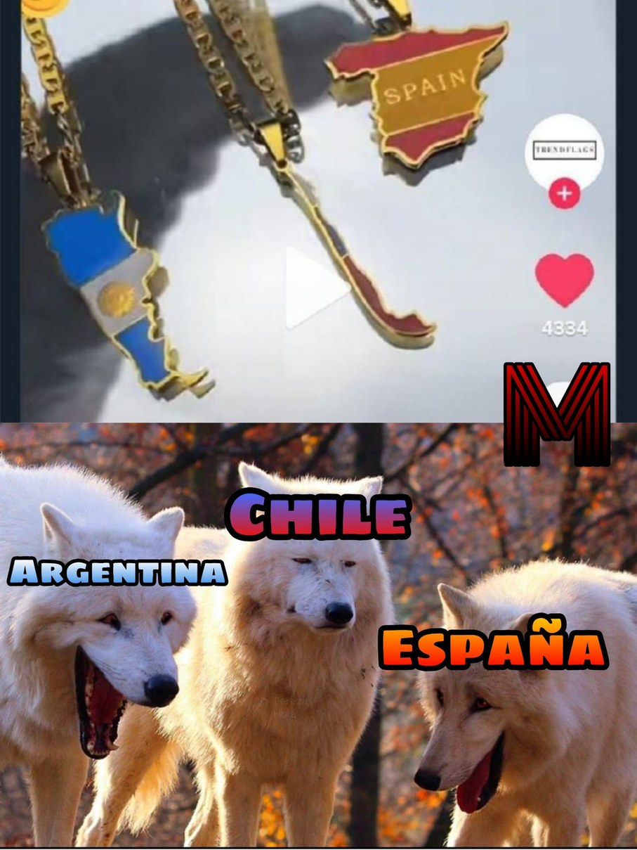 Chile flaquito - meme