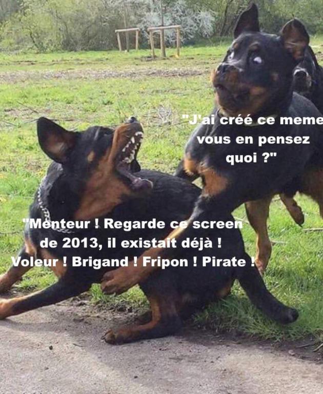 Fripons - meme