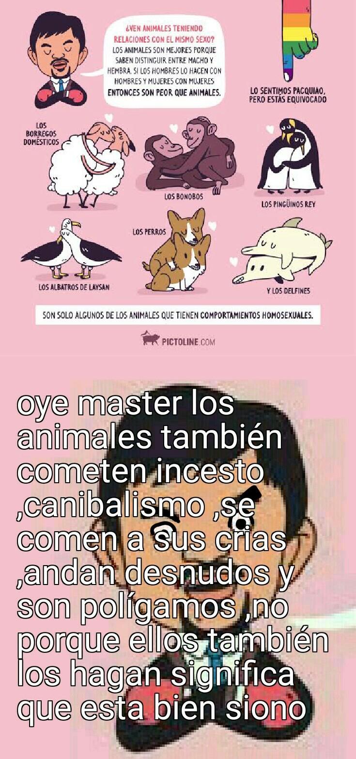 Los animales no tienen moral ni conocimiento del bien o el mal  XD - meme