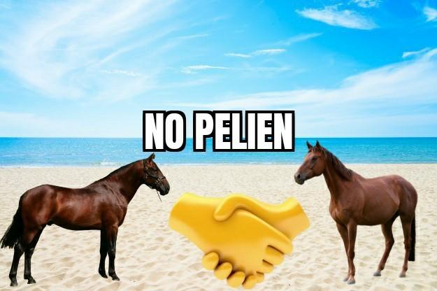No pelien HD 1/3 - meme