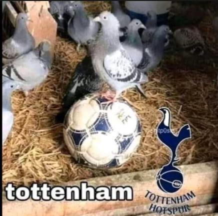 Tottenham - meme