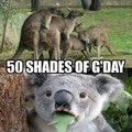 50 shades of G'Gay