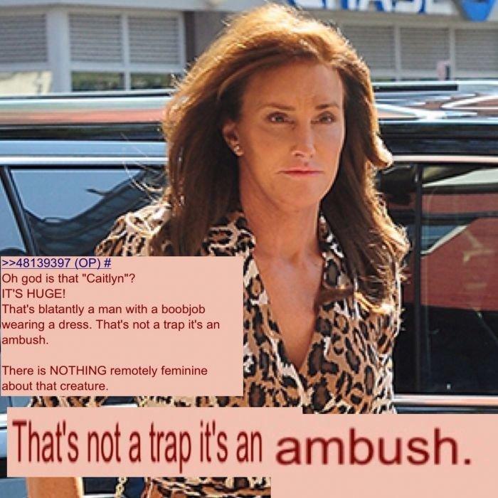 Bruce Jenner should be given the death sentence. - meme