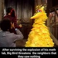 big bird no