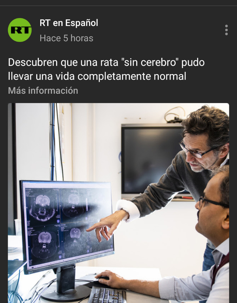LOS POLITICOS CORRUPTOS - meme
