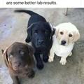Positive lab test