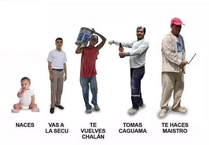México maistro - meme