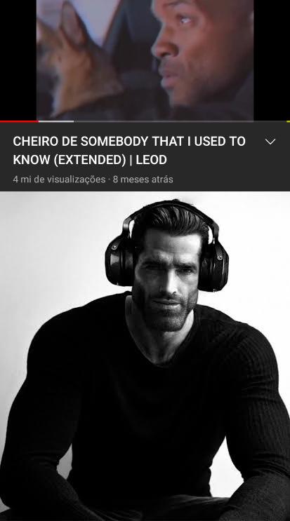 Música pra quem tem gosto refinado - meme