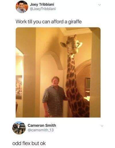 Work till you can afford a giraffe - meme