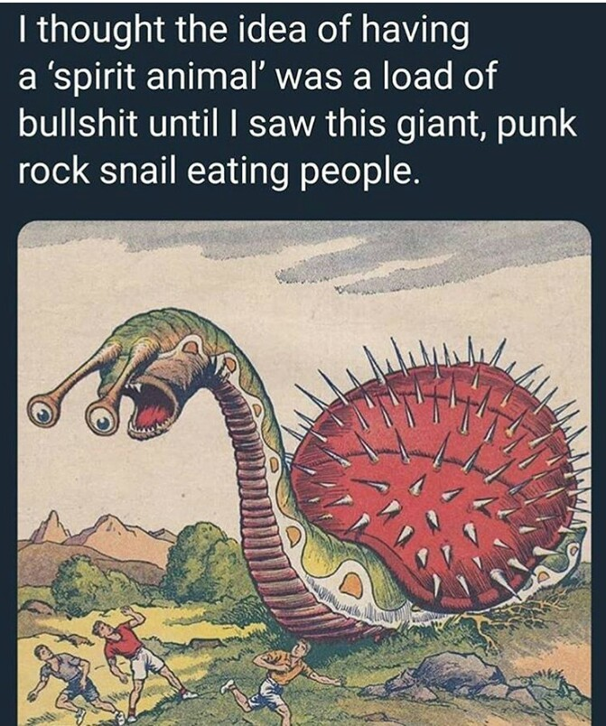 What is your spirit animal? - meme