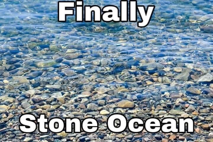 Jojo`s bizarre adventure Stone Ocean - meme